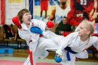 соревнование по карате....девочки.