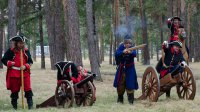 Полтавская битва в парке Гагарина